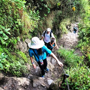 Wayne Picchu trail